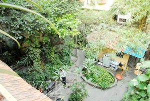 Maison jardin de Hanoi