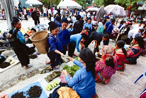 Marche de Hoang Su Phi - Ha Giang