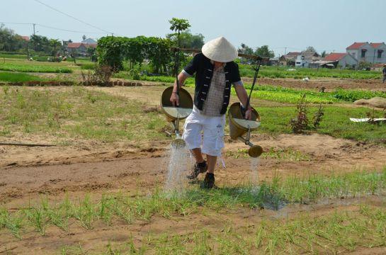 travail de jardinage a Tra Que