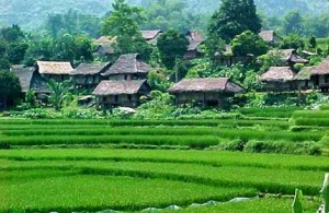 village-mong-des-thai
