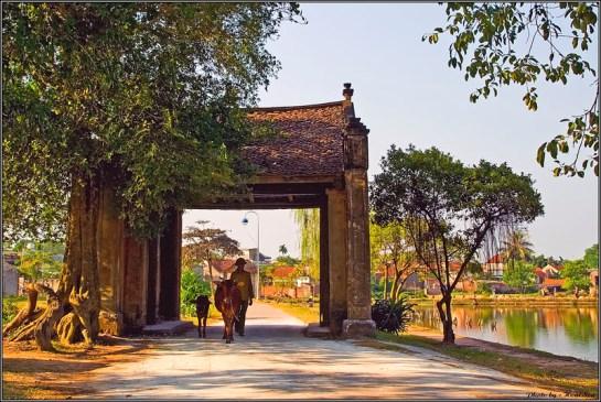 le village duong lam