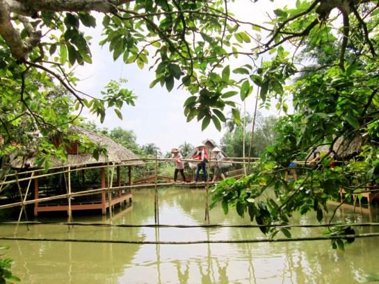 visiter delta du mekong pont singe.jpg