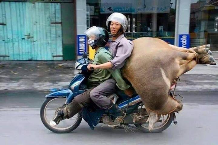 voyage vietnam art conduite moto
