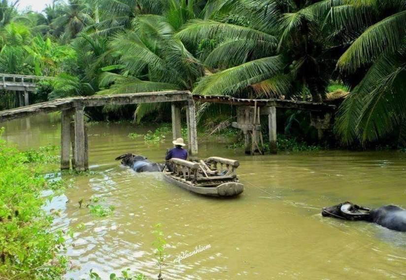 visiter vietnam delta mekong.jpg