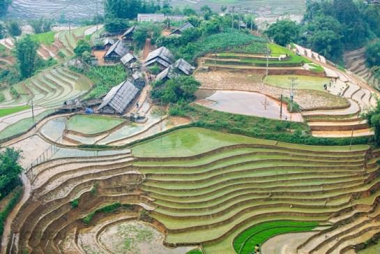 sapa vietnam village ethnique.jpg