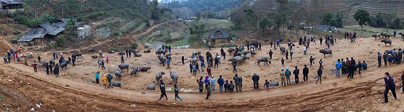 visite marches ethniques nord vietnam.jpg