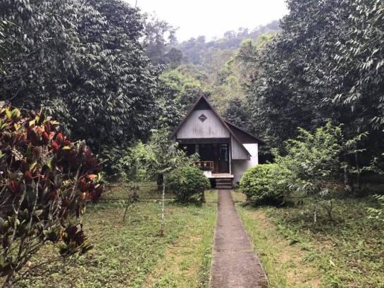 maison de luong au parc national de cuc phuong