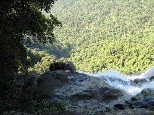 Le parc national de Bach Ma