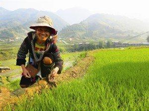 La vie des H'Mông à Sapa