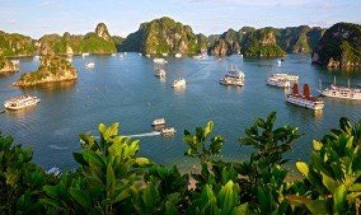 Croisière à la Baie d'Halong