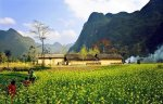 Voyage Ha Giang en quatre saisons