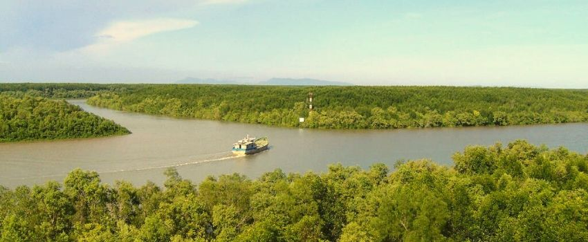 La mangrove de Can Gio - Circuit Delta du Mékong