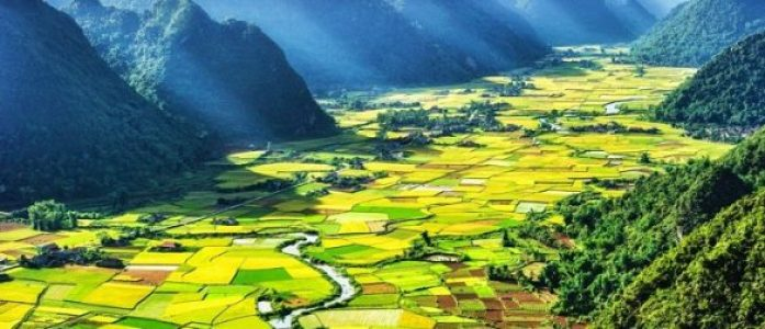 Les rizieres en terrace à Son La Vietnam
