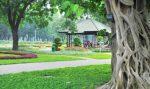 Parc Le Van Tam