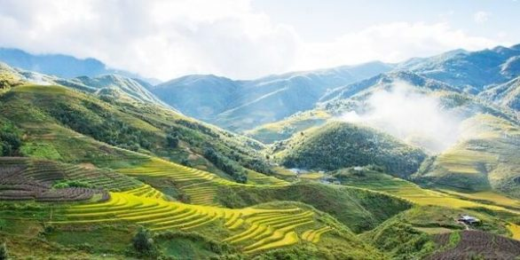 que faire à sapa rizière en terrasse à Sapa
