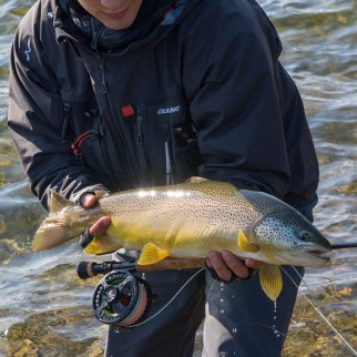 raintroutfly-norge2017-1-7
