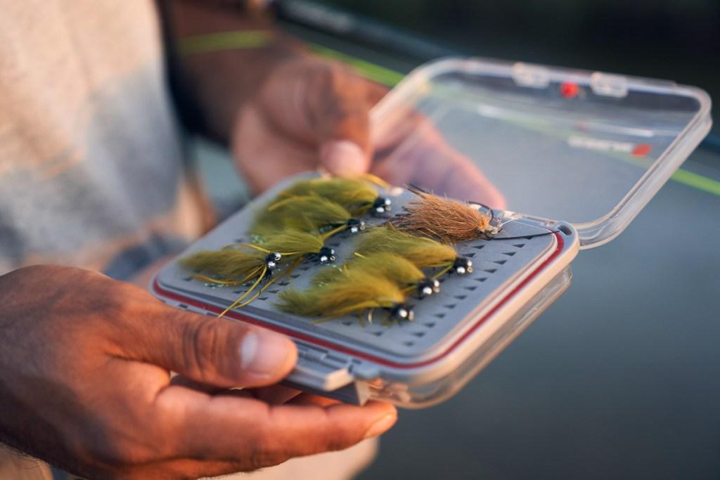 Flies fishing big carps