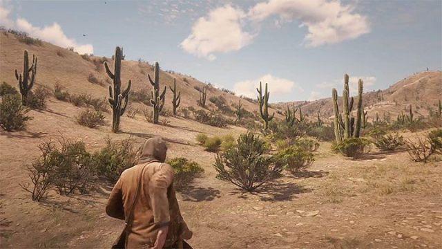 Выполнение всех шагов, описанных выше, позволяет вам исследовать Мексику - Как добраться до Мексики в RDR2?  - FAQ - Red Dead Redemption 2 Guide