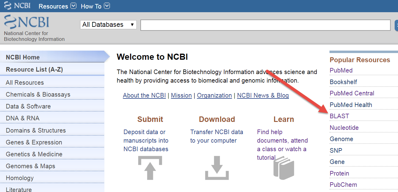 Guide on the Side: NCBI BLAST: Identify and Compare Sequences Single-Page View