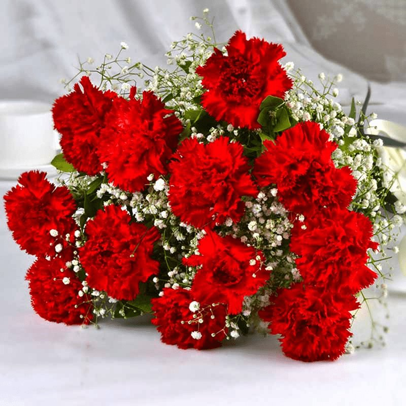 valentines-red-carnations