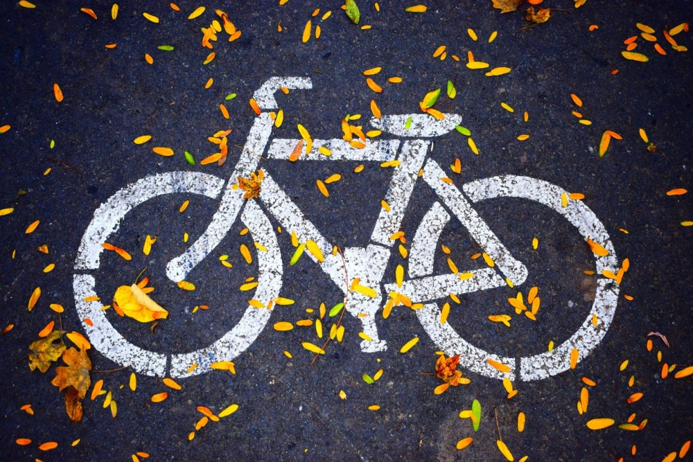 Bicycle Logo Healthy Lifestyle