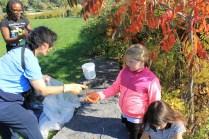 Shoreline Clean Up 028-800