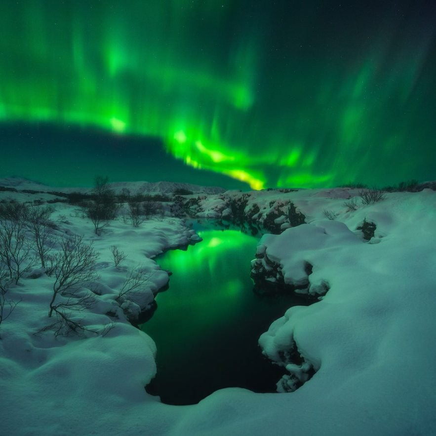 Book Northern Lights Tour Iceland