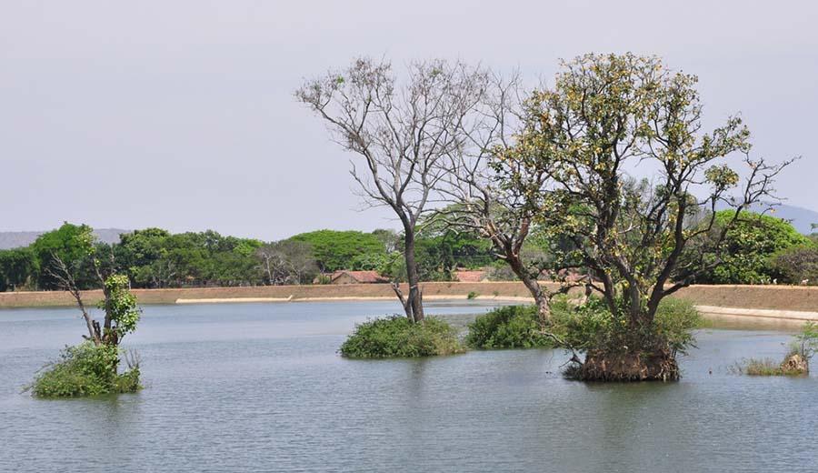 Budhapara Lake