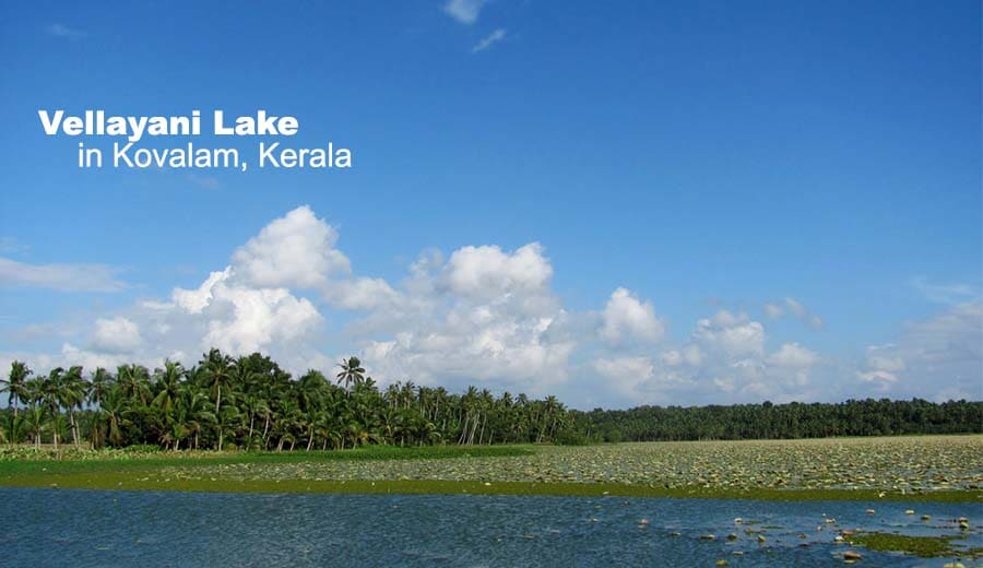 Vellayani Lake in Kovalam, Kerala