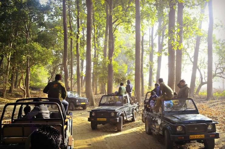 Jeep Safari in India