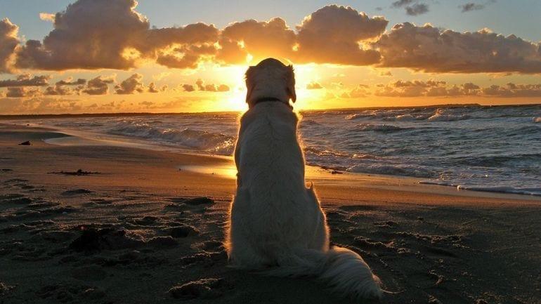 Sensational Sunsets