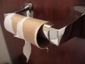 excessive toilet paper use