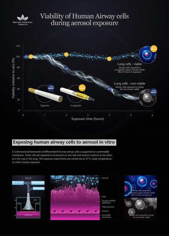 BAT- exposing human airway cells to aerosol in vitro