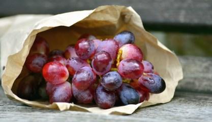 sacchetti per la frutta compostabili