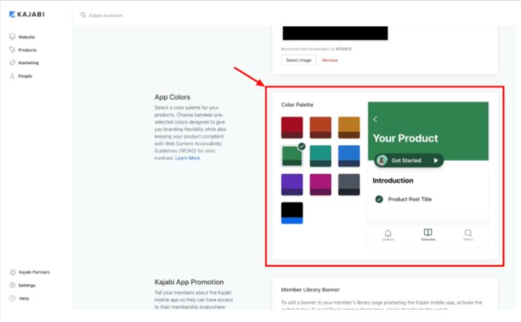 The mobile app color palette options.