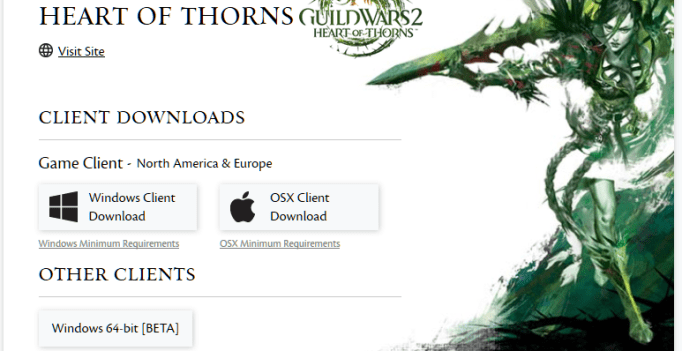 Guild War 2 64 Bit Client