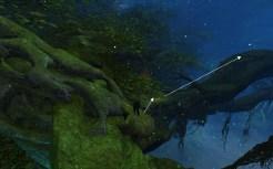 Hidden Amphibian Barrier