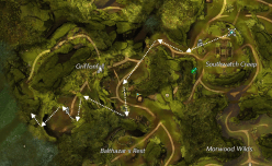 Hidden Amphibian Map