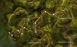 Hidden Amphibian Map