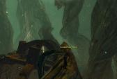 Jungle Totem 9