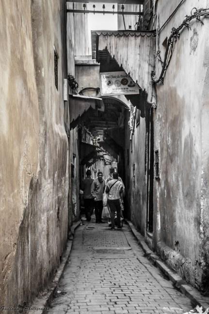 Fes 2014 - Ancienne Medina - Les anciennes portes cachent aux hommes l'intimité de l'histoire.
