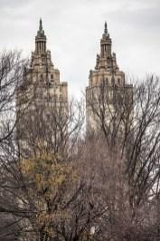 Central Park - New-York