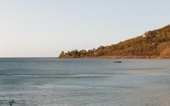 Deshaies - Plage de Grande-Anse