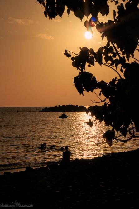 Guadeloupe-80