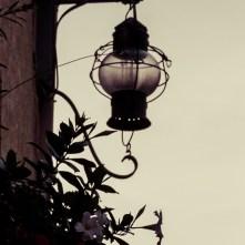 Collioure-99
