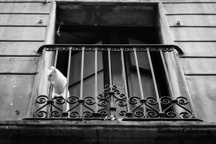 Barcelona_blanco_negro-3