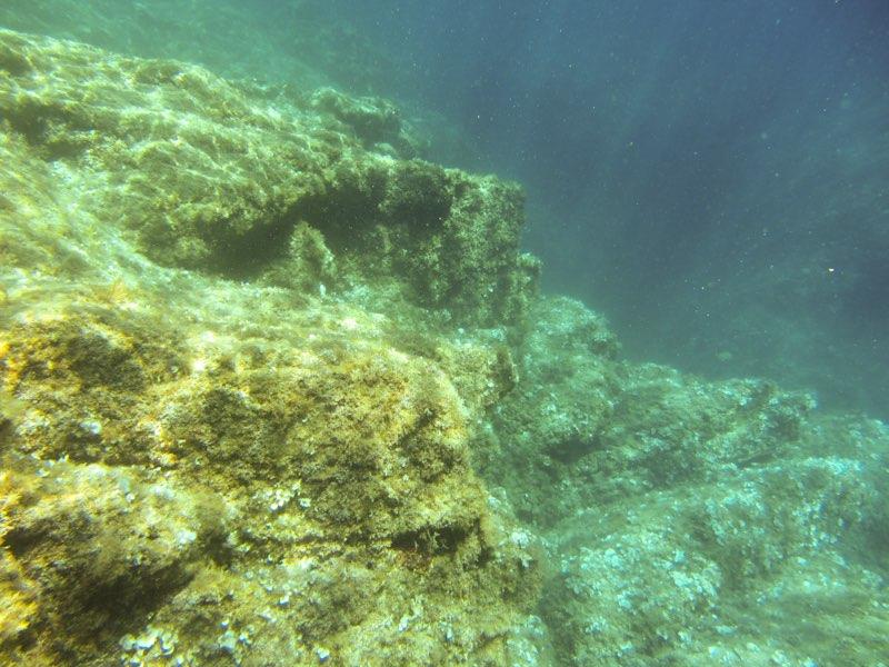 Fotografiando bajo el agua