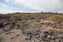 Típico paisaje árido de la costa sur, Las Galletas.
