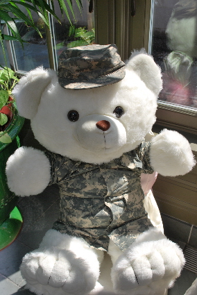 My Army bear in it's ACU's.... will stay with me till you're home!