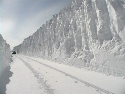 ACTUAL MICHIGAN SNOW!